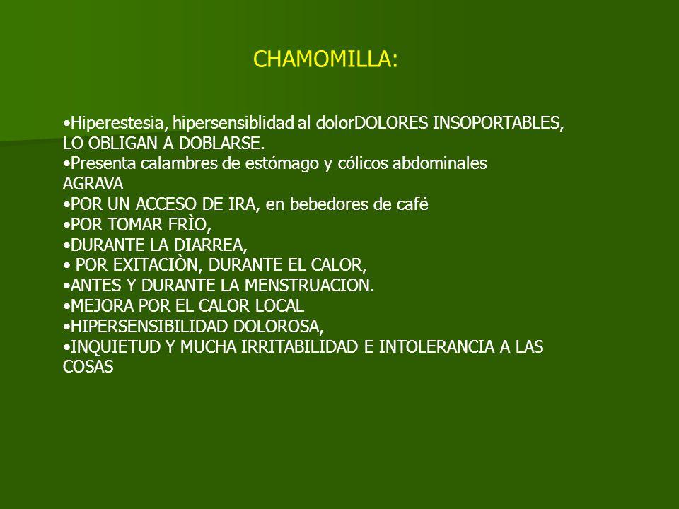 CHAMOMILLA: Hiperestesia, hipersensiblidad al dolorDOLORES INSOPORTABLES, LO OBLIGAN A DOBLARSE. Presenta calambres de estómago y cólicos abdominales