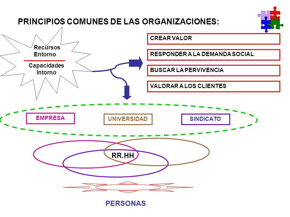 PRINCIPIOS COMUNES DE LAS ORGANIZACIONES: Recursos Entorno Capacidades Intorno CREAR VALOR RESPONDER A LA DEMANDA SOCIAL BUSCAR LA PERVIVENCIA VALORAR