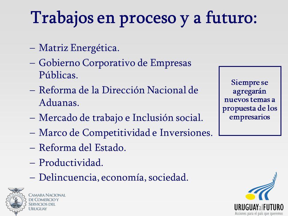 Trabajos en proceso y a futuro: –Matriz Energética. –Gobierno Corporativo de Empresas Públicas. –Reforma de la Dirección Nacional de Aduanas. –Mercado