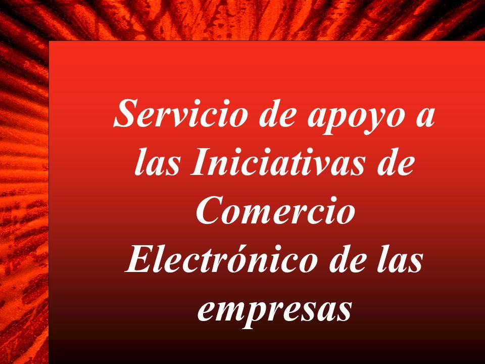 Servicio de apoyo a las Iniciativas de Comercio Electrónico de las empresas