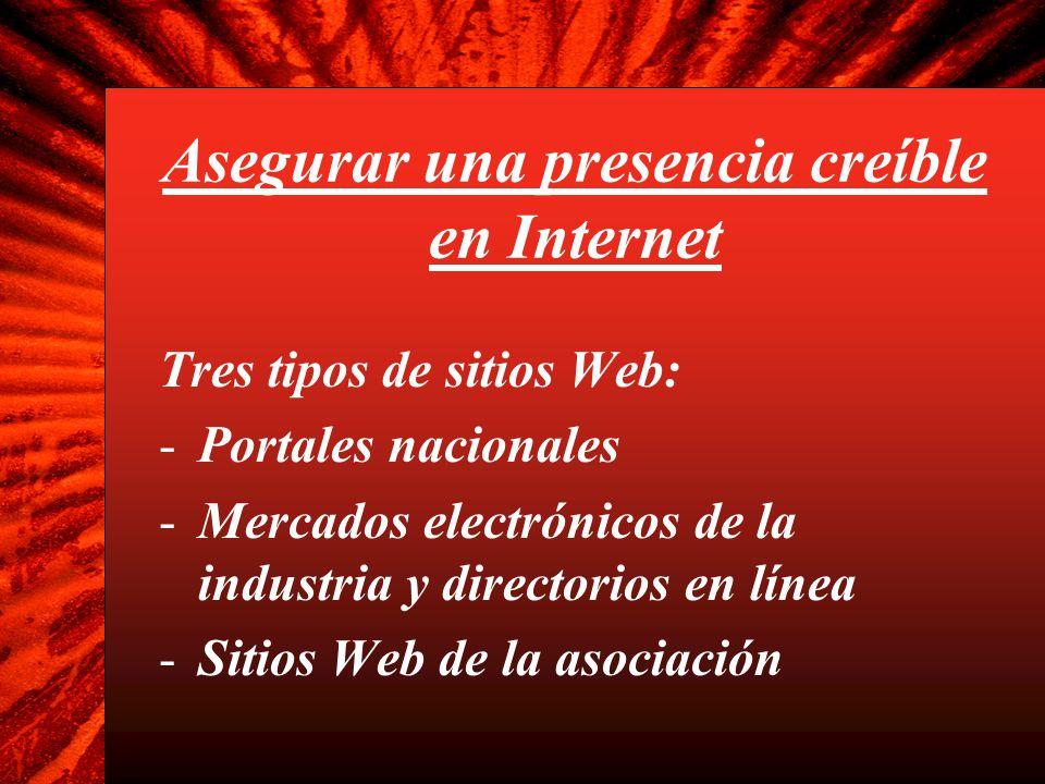 Asegurar una presencia creíble en Internet Tres tipos de sitios Web: -Portales nacionales -Mercados electrónicos de la industria y directorios en líne