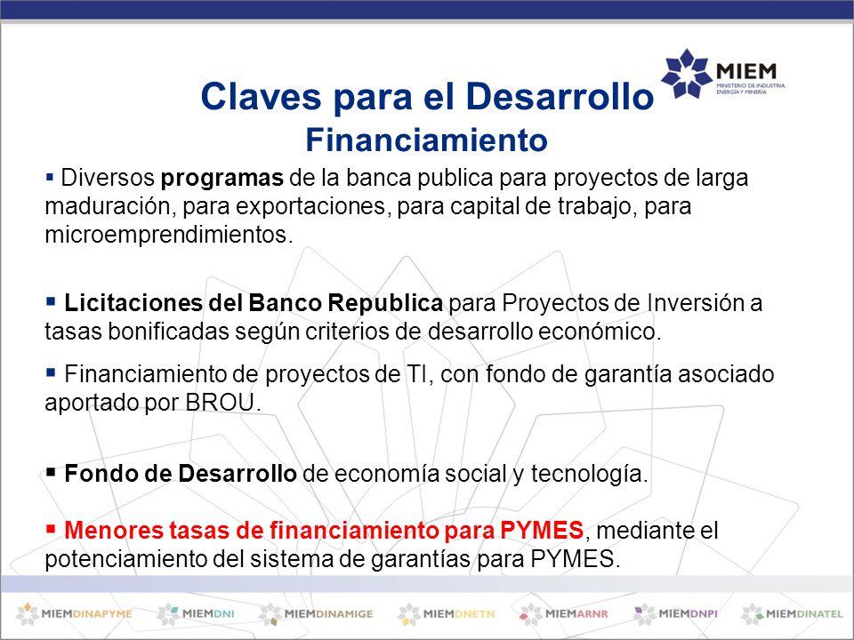 Diversos programas de la banca publica para proyectos de larga maduración, para exportaciones, para capital de trabajo, para microemprendimientos.