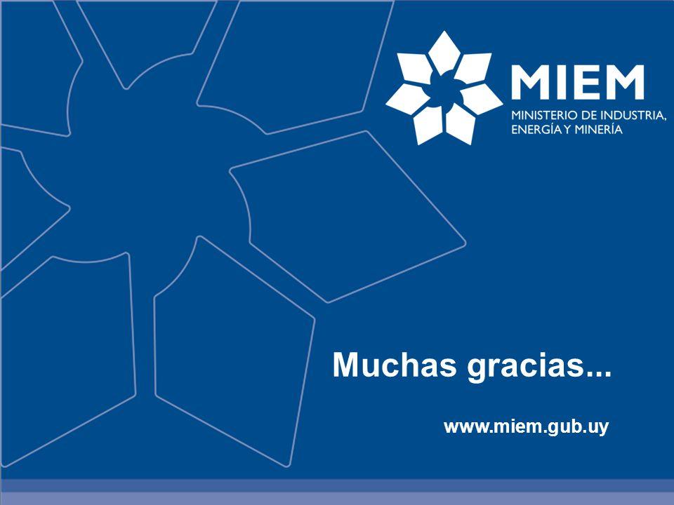MUCHAS GRACIAS… Muchas gracias... www.miem.gub.uy