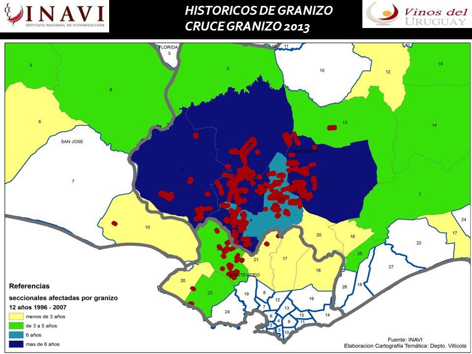 HISTORICOS DE GRANIZO CRUCE GRANIZO 2013