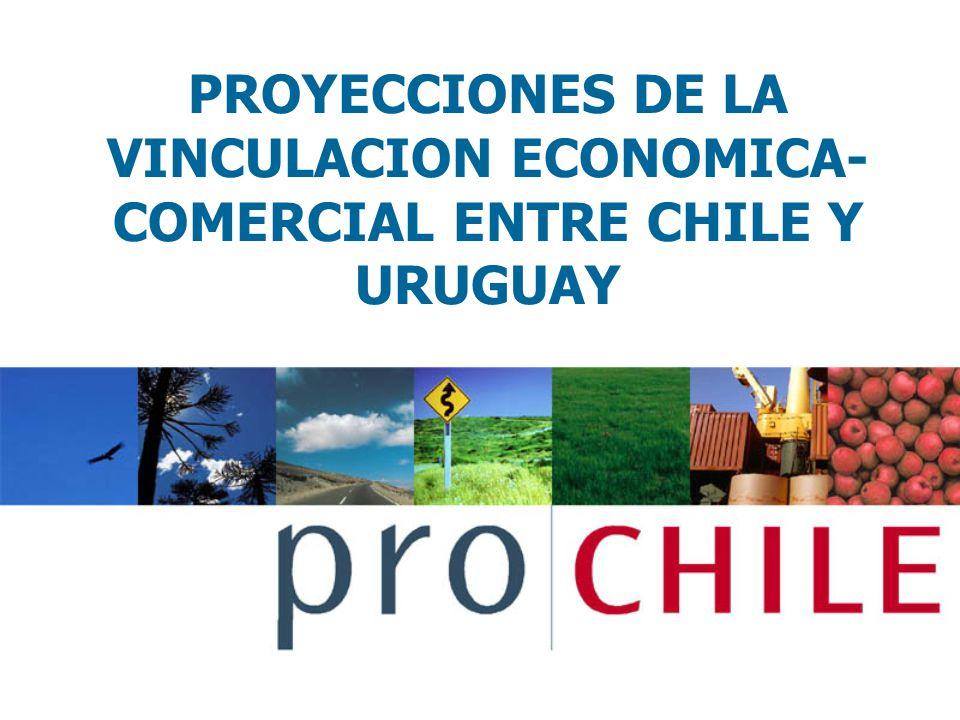 FUENTE: ProChile BALANZA COMERCIAL Las exportaciones destinadas a Uruguay alcanzaron un monto de US$ 66,6 millones durante el año 2004, registrando un crecimiento de 71,8% respecto al año anterior y de un 8,3% para el período 04/00 En el período 04/03, las importaciones registraron una caída de 11,7% y para el período 04/00 este alcanzó a 25,5%.