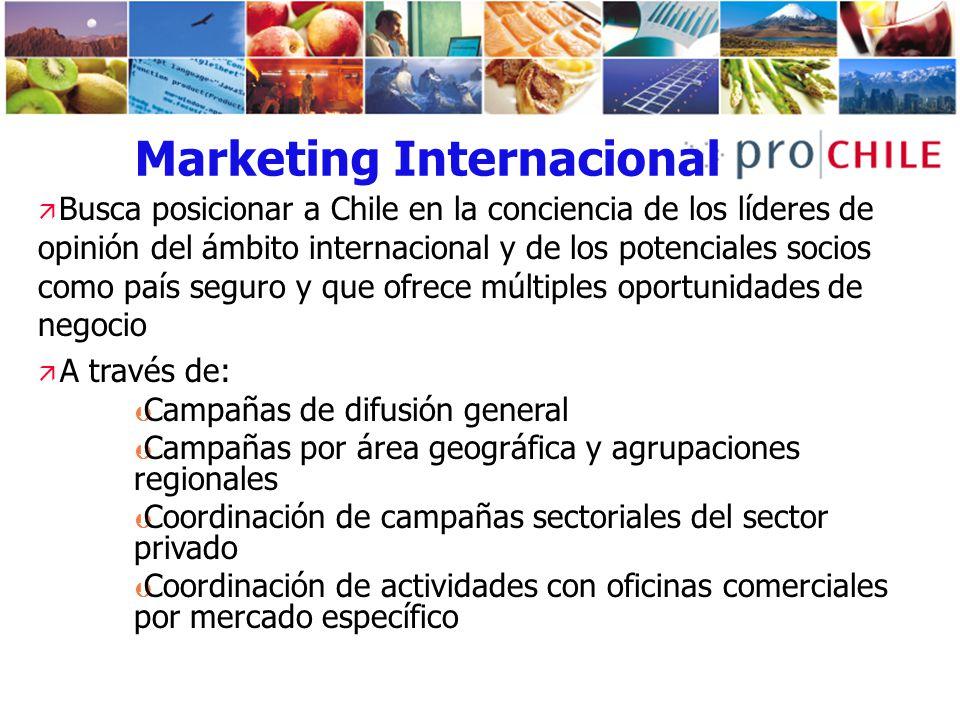 Marketing Internacional Busca posicionar a Chile en la conciencia de los líderes de opinión del ámbito internacional y de los potenciales socios como