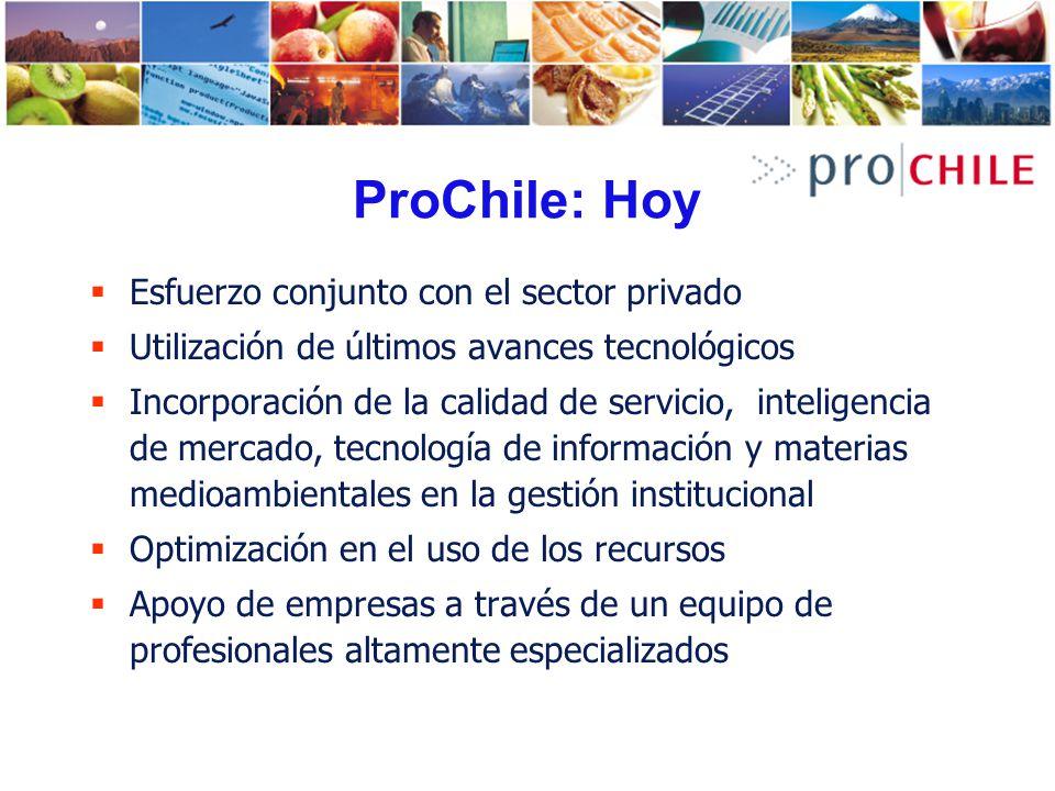 ProChile: Hoy OBJETIVOS ESTRATEGICOS Aumentar el impacto de las acciones de promoción de exportaciones Aumentar el cofinanciamiento privado de las acciones de PE Fomentar la descentralización de la oferta exportable nacional Focalizar el trabajo en mercados con los que Chile ha establecido Acuerdos Comerciales.