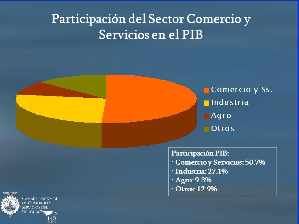 Participación del Sector Comercio y Servicios en el PIB Participación PIB: Comercio y Servicios: 50.7% Industria: 27.1% Agro: 9.3% Otros: 12.9%