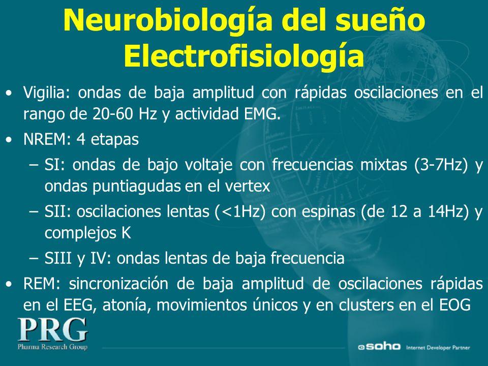Neurobiología del sueño Electrofisiología Vigilia: ondas de baja amplitud con rápidas oscilaciones en el rango de 20-60 Hz y actividad EMG.