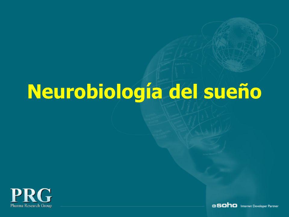 Neurobiología del sueño