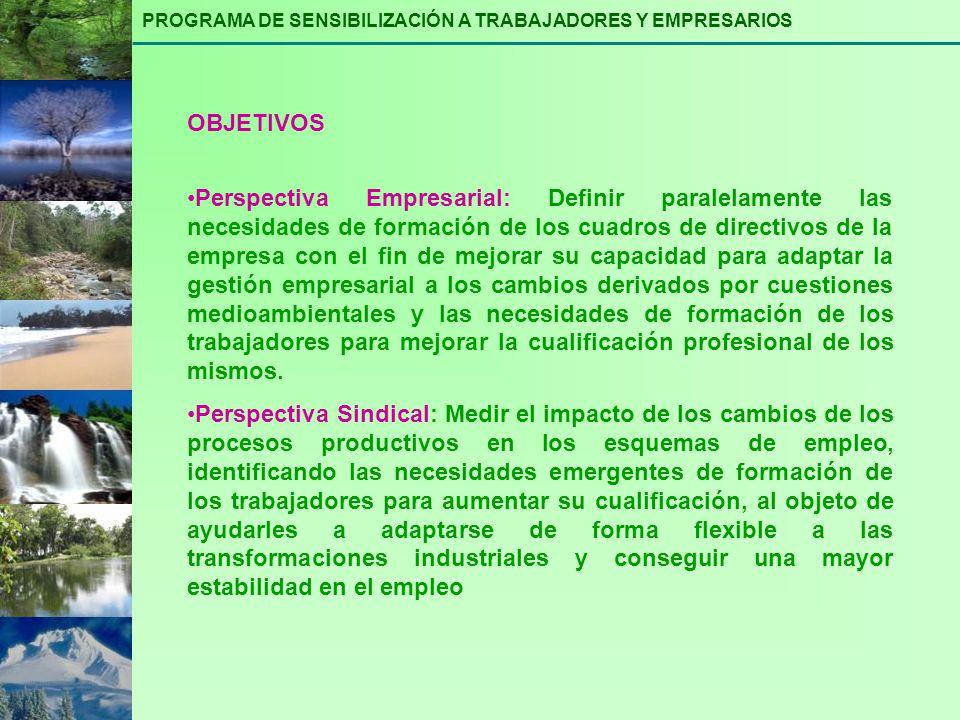 Perspectiva Empresarial: Definir paralelamente las necesidades de formación de los cuadros de directivos de la empresa con el fin de mejorar su capaci