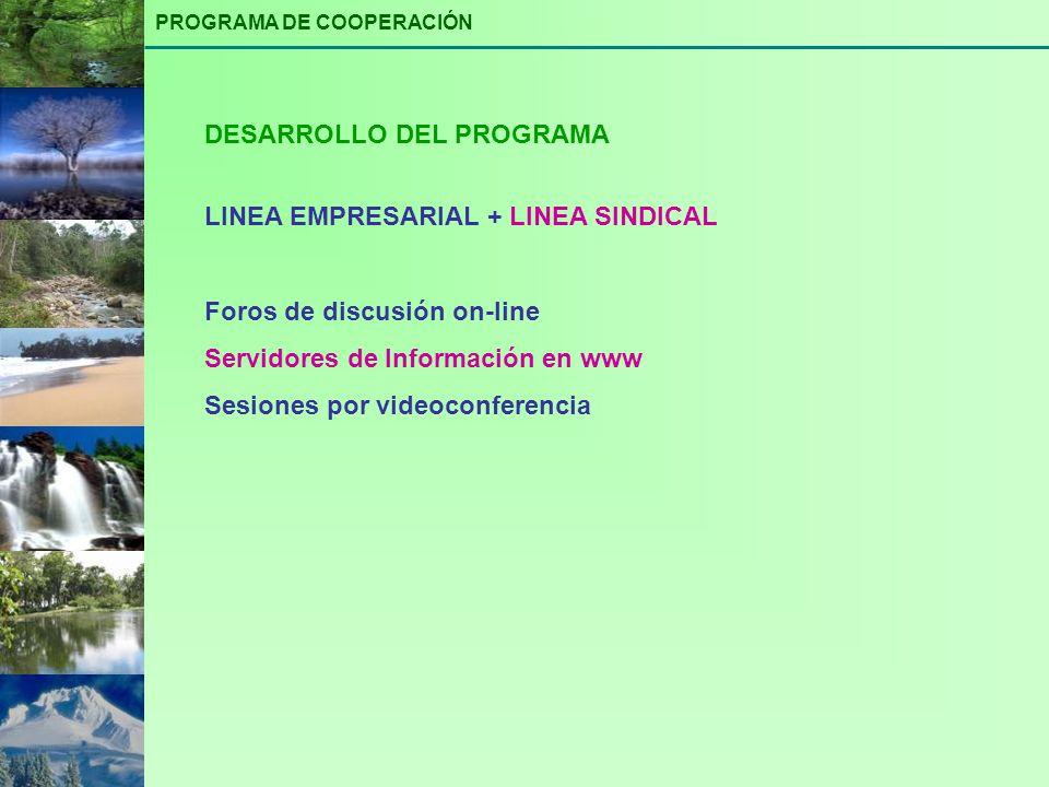 LINEA EMPRESARIAL + LINEA SINDICAL Foros de discusión on-line Servidores de Información en www Sesiones por videoconferencia DESARROLLO DEL PROGRAMA P