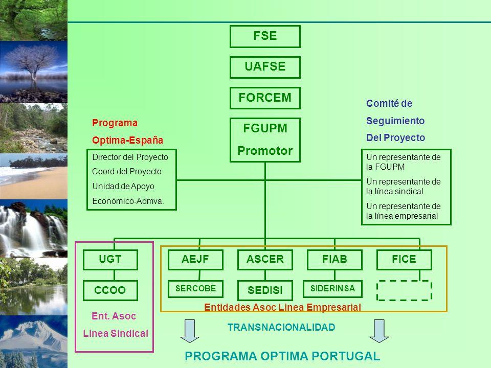 FSE UAFSE FORCEM FGUPM Promotor Director del Proyecto Coord del Proyecto Unidad de Apoyo Económico-Admva. Un representante de la FGUPM Un representant