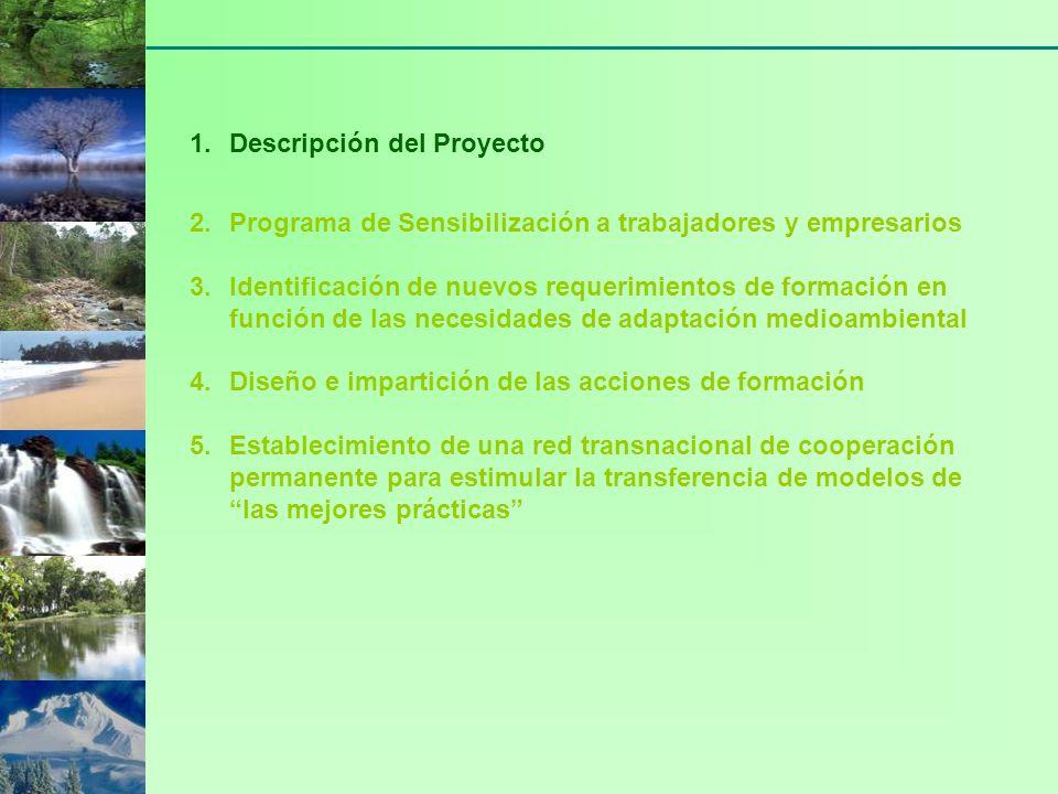 Se trata de identificar las necesidades de formación, como consecuencia de las necesidades de adaptación de los procesos de producción a los nuevos requerimientos medioambientales MISIÓN DE LA SEGUNDA FASE.