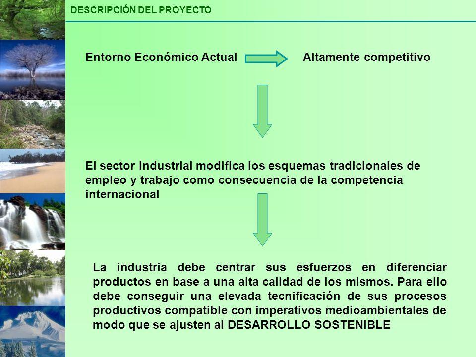 DESCRIPCIÓN DEL PROYECTO Entorno Económico ActualAltamente competitivo El sector industrial modifica los esquemas tradicionales de empleo y trabajo co