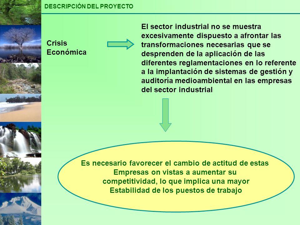 Identificar a nivel sectorial los cambios previsibles en los procesos de producción Analizar sectorialmente el aumento de la competitividad de la industria en base a la incorporación de procedimientos y técnicas de mejoras medioambiental Analizar y prever las mutaciones estructurales del mercado de trabajo como consecuencia de los cambios en los procesos de producción identificados Definir los nuevos requerimientos de formación para lograr la cualificación apropiada de los trabajadores que les permita mayor movilidad y flexibilidad para adaptarse a los cambios RESULTADOS ESPERADOS PROGRAMA DE SENSIBILIZACIÓN A TRABAJADORES Y EMPRESARIOS