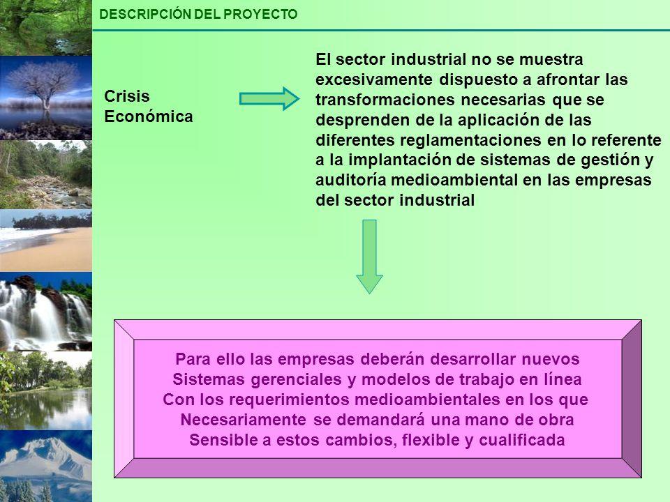 Crisis Económica El sector industrial no se muestra excesivamente dispuesto a afrontar las transformaciones necesarias que se desprenden de la aplicac