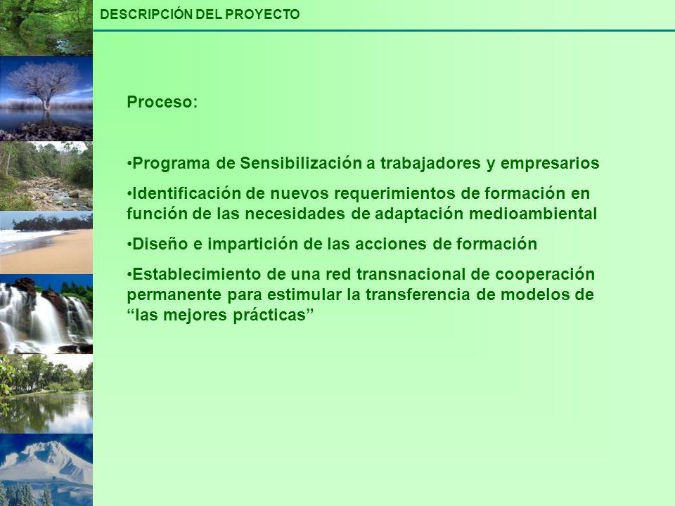 Proceso: Programa de Sensibilización a trabajadores y empresarios Identificación de nuevos requerimientos de formación en función de las necesidades d