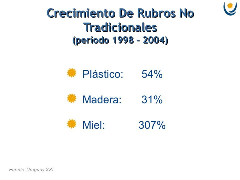 Fuente: Uruguay XXI Crecimiento De Rubros No Tradicionales (período 1998 – 2004) Crecimiento De Rubros No Tradicionales (período 1998 – 2004) Plástico