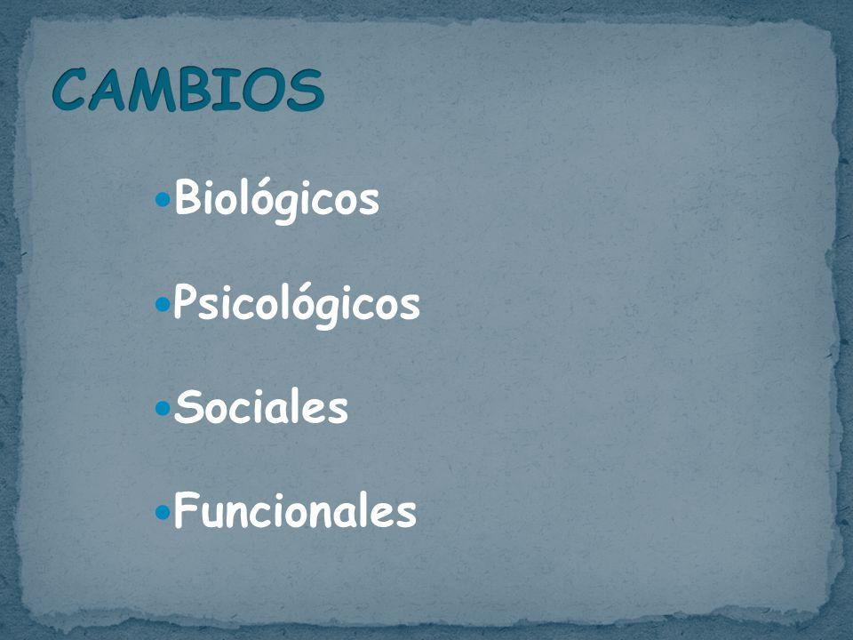 Biológicos Psicológicos Sociales Funcionales