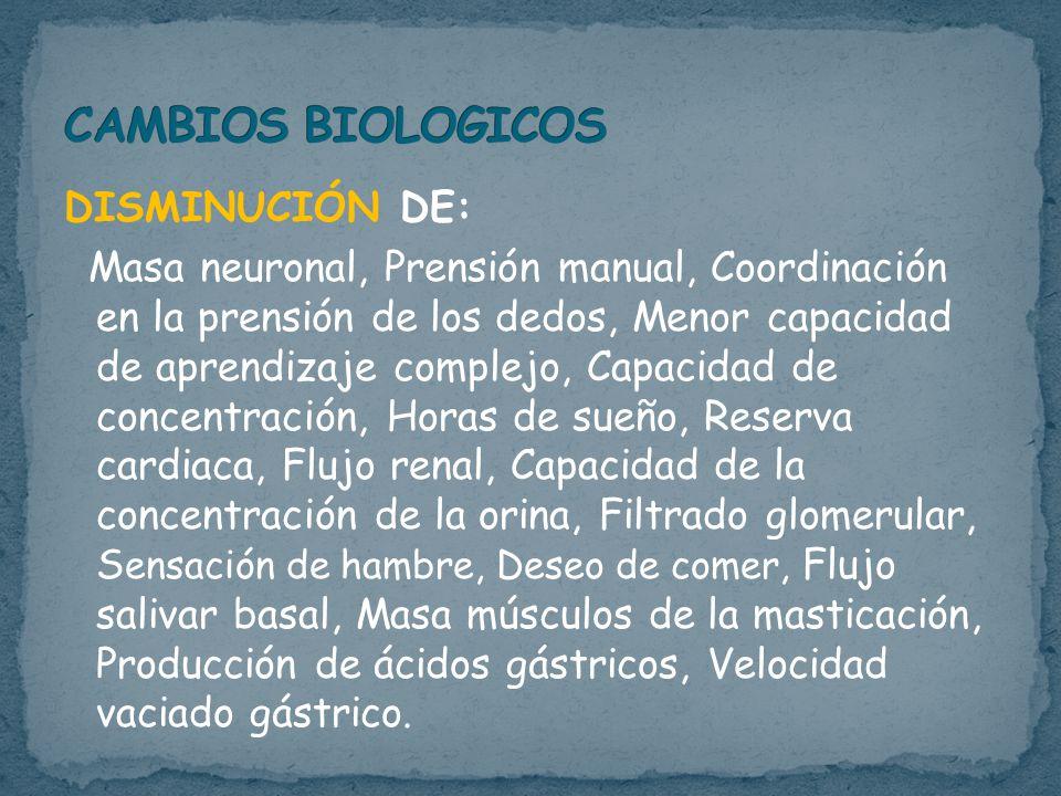 DISMINUCIÓN DE: Masa neuronal, Prensión manual, Coordinación en la prensión de los dedos, Menor capacidad de aprendizaje complejo, Capacidad de concentración, Horas de sueño, Reserva cardiaca, Flujo renal, Capacidad de la concentración de la orina, Filtrado glomerular, S ensación de hambre, Deseo de comer, Flujo salivar basal, Masa músculos de la masticación, Producción de ácidos gástricos, Velocidad vaciado gástrico.