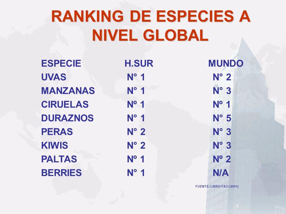 ACTUALMENTE, CHILE REPRESENTA EL 48% DE LAS EXPORTACIONES DE FRUTAS DEL HEMISFERIO SUR (UVA, MANZANAS, KIWIS Y PERAS), POSICIONANDONOS COMO LIDER ENTR