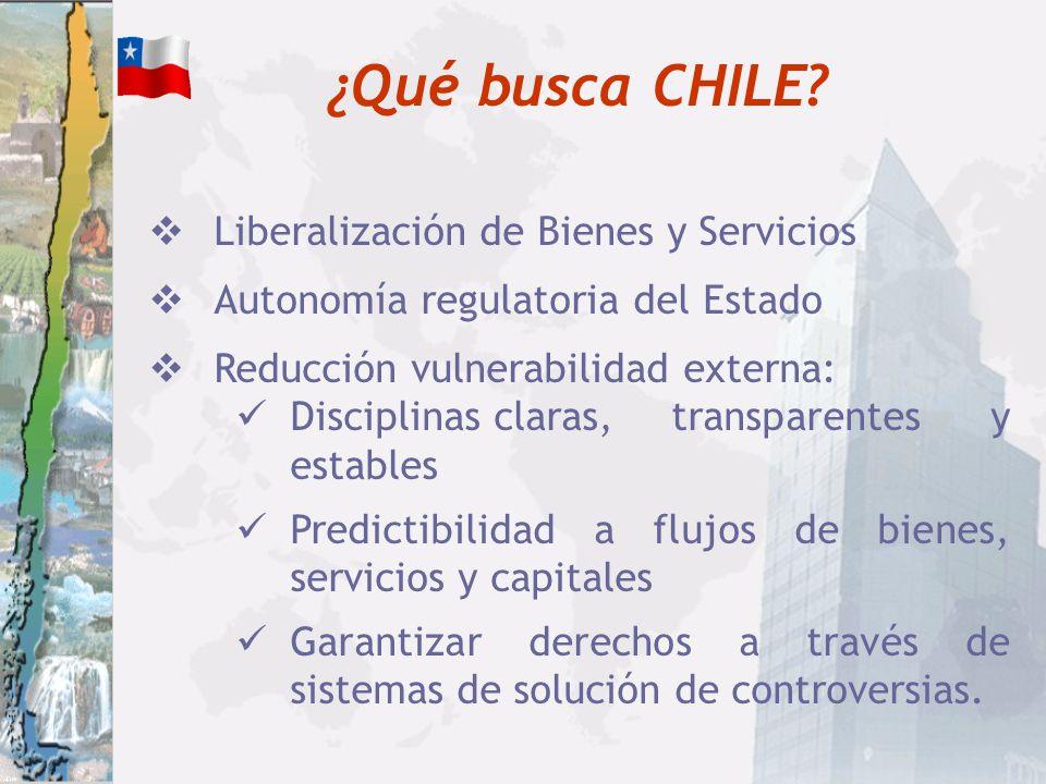¿Qué es CHILE? Economía abierta Dependiente del Comercio Internacional País pequeño Cumplidor/Transparente/Legalista Consenso sobre Política Comercial