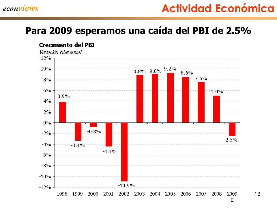 13 Actividad Económica Para 2009 esperamos una caída del PBI de 2.5% econ views