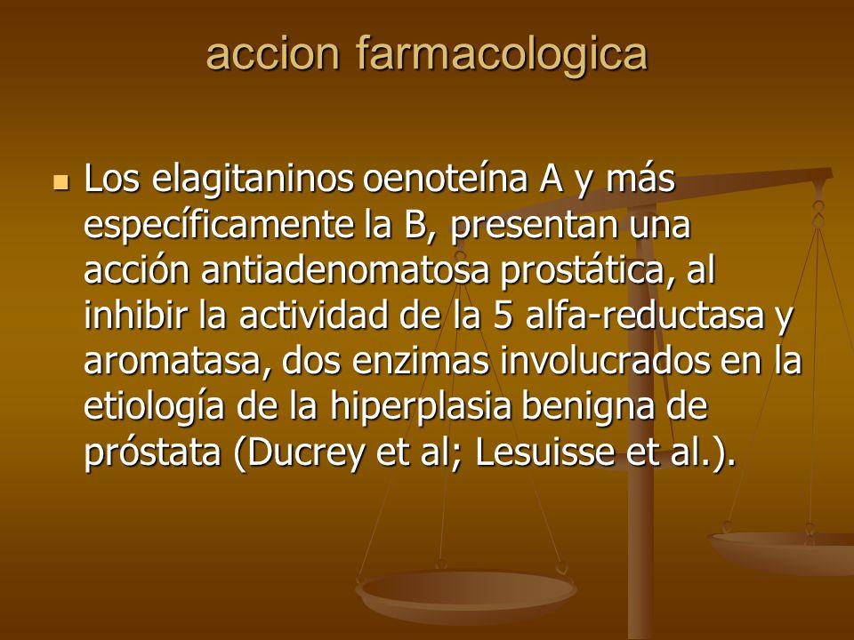 accion farmacologica Los elagitaninos oenoteína A y más específicamente la B, presentan una acción antiadenomatosa prostática, al inhibir la actividad