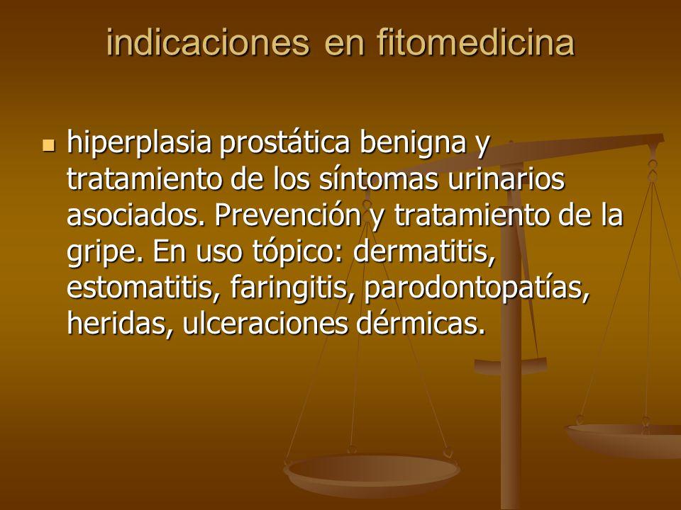 indicaciones en fitomedicina hiperplasia prostática benigna y tratamiento de los síntomas urinarios asociados. Prevención y tratamiento de la gripe. E