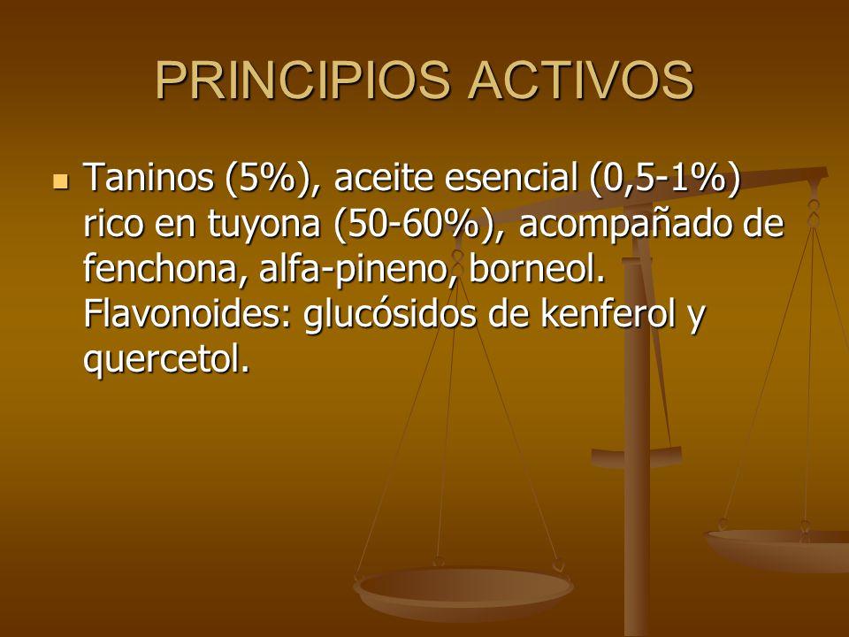 PRINCIPIOS ACTIVOS Taninos (5%), aceite esencial (0,5-1%) rico en tuyona (50-60%), acompañado de fenchona, alfa-pineno, borneol. Flavonoides: glucósid