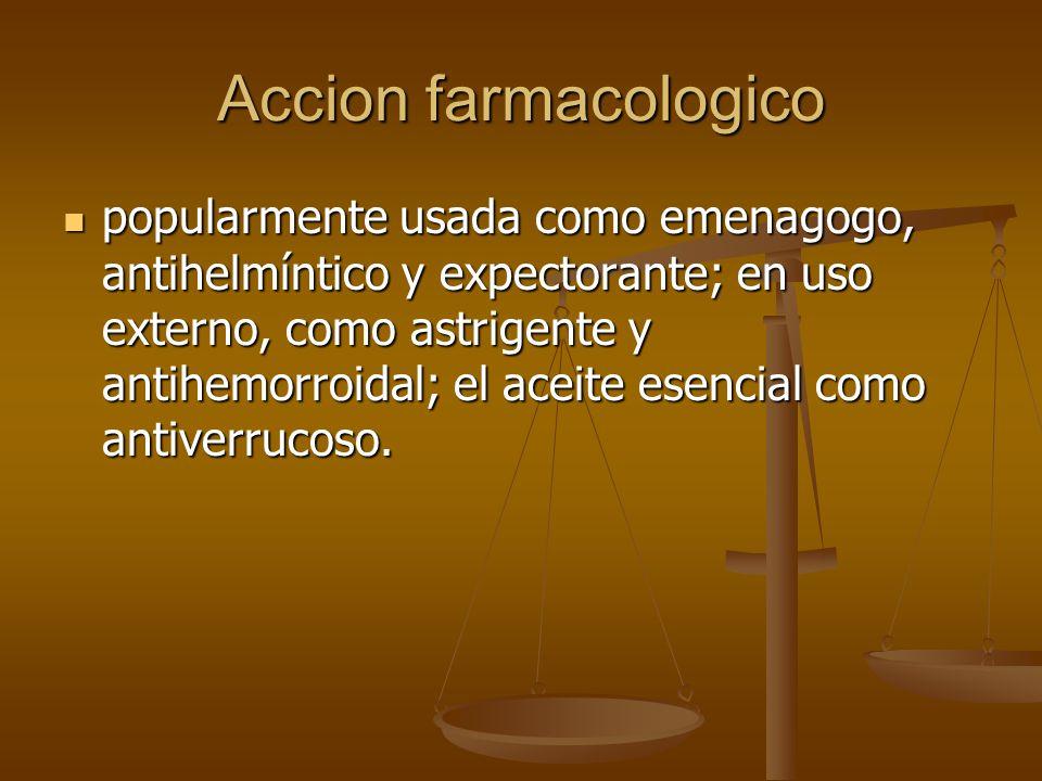 Accion farmacologico popularmente usada como emenagogo, antihelmíntico y expectorante; en uso externo, como astrigente y antihemorroidal; el aceite es