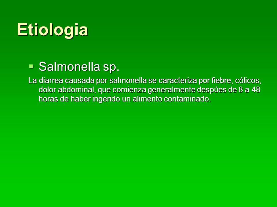 Etiologia Salmonella sp.Salmonella sp.