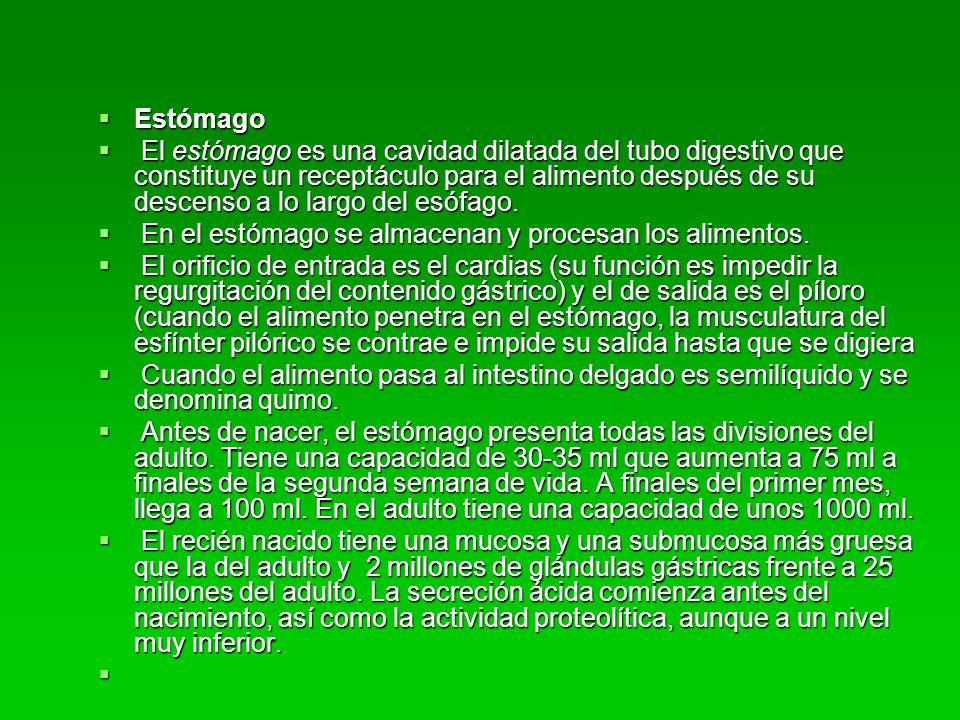 Gastroenterocolitis Clasificacion: Clasificacion: Sin deshidratación Sin deshidratación Con deshidratación: Con deshidratación: leve: perdida 5% de peso corporal leve: perdida 5% de peso corporal moderada: pérdida de 10% peso corporal moderada: pérdida de 10% peso corporal severa: (shock hipovolemico) perdida entre 15%(o mas) de peso corporal severa: (shock hipovolemico) perdida entre 15%(o mas) de peso corporal