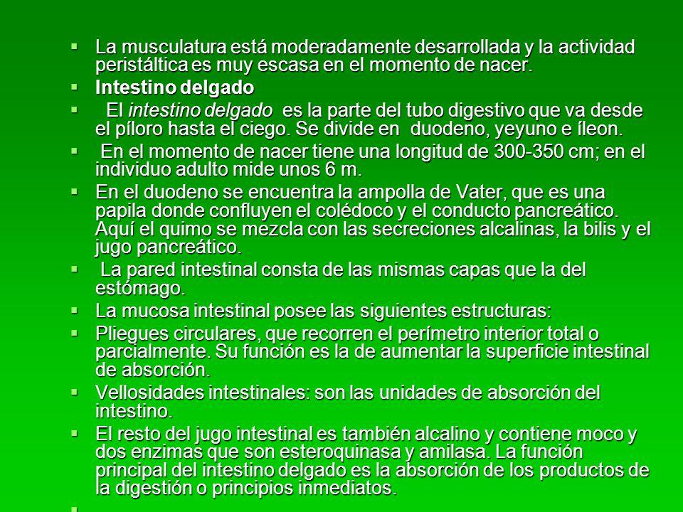 Tratamiento de la gastroenterocolitis Tratamiento de la gastroenterocolitis Los diagnosticos de gec y deshidratación son clinicos.