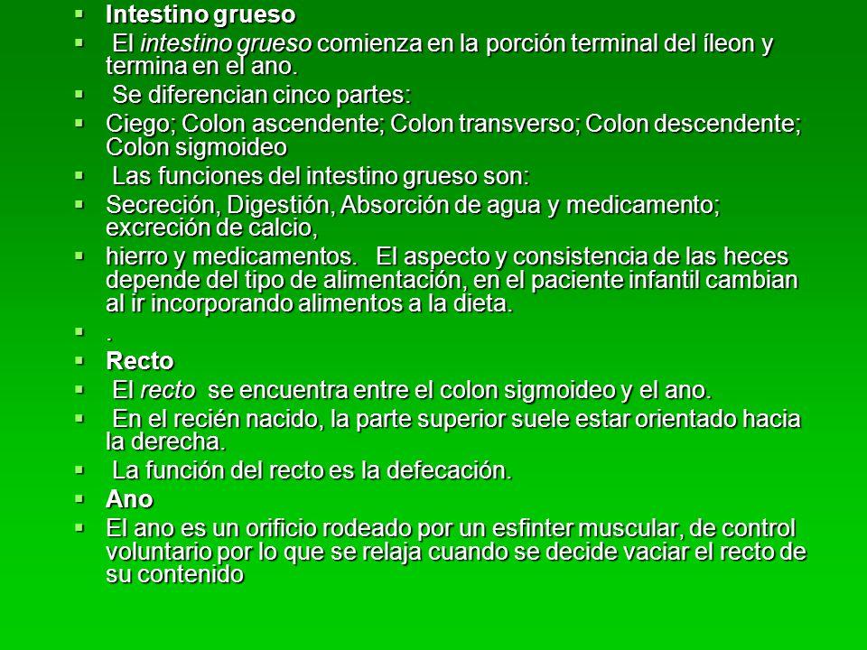 Tratamiento de la gastrenterocolitis Asociciacion con: pujos, tenesmo, urgencia defecatoria, dolor abdominal o anal, cólicos, etc.