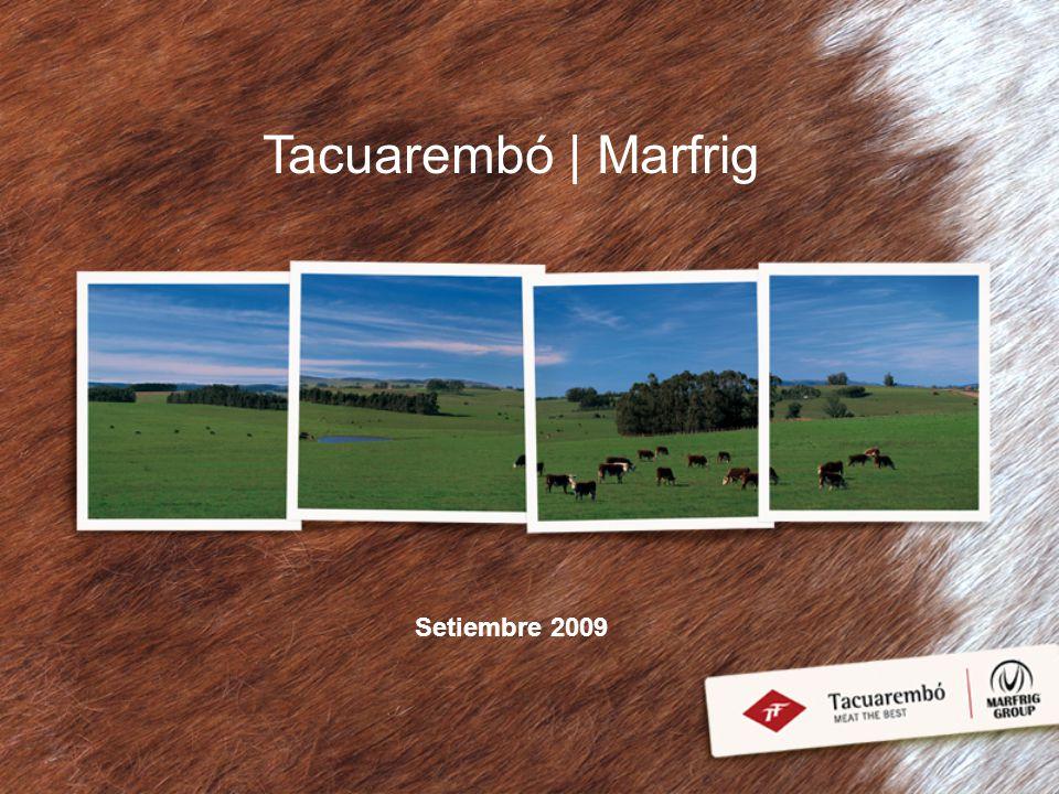 Contenido Temático Grupo Marfrig: Historia y Presente Marfrig en Uruguay Estrategia Comercial Productos Certificaciones y Programas Programas de RSE Información Financiera Condiciones del Programa de Emisión de las Obligaciones Negociables