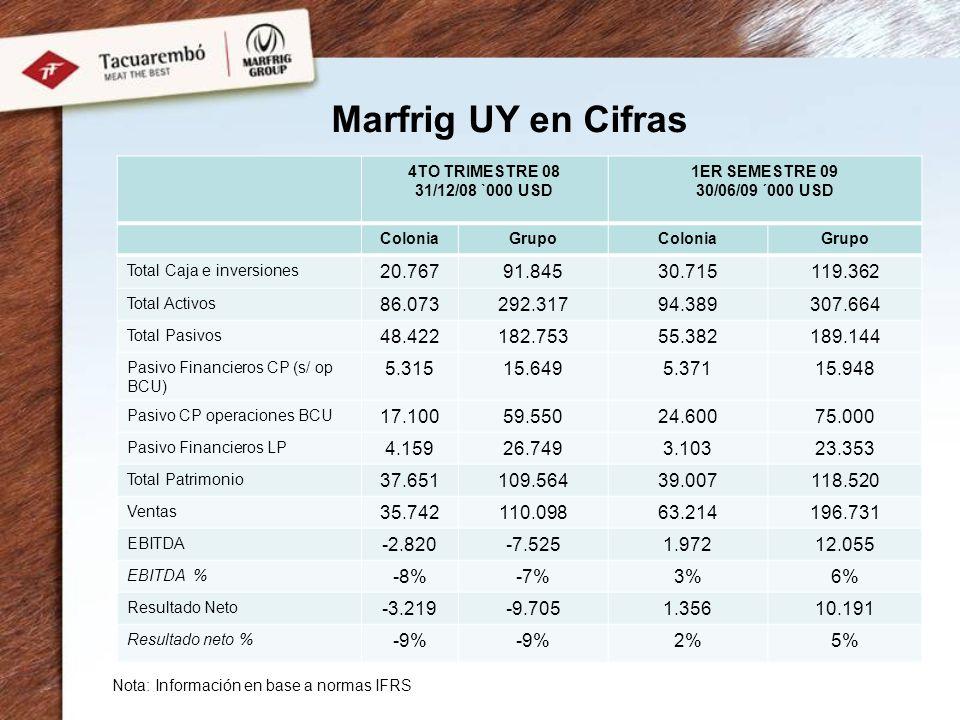 Marfrig UY en Cifras 4TO TRIMESTRE 08 31/12/08 `000 USD 1ER SEMESTRE 09 30/06/09 ´000 USD ColoniaGrupoColoniaGrupo Total Caja e inversiones 20.76791.8