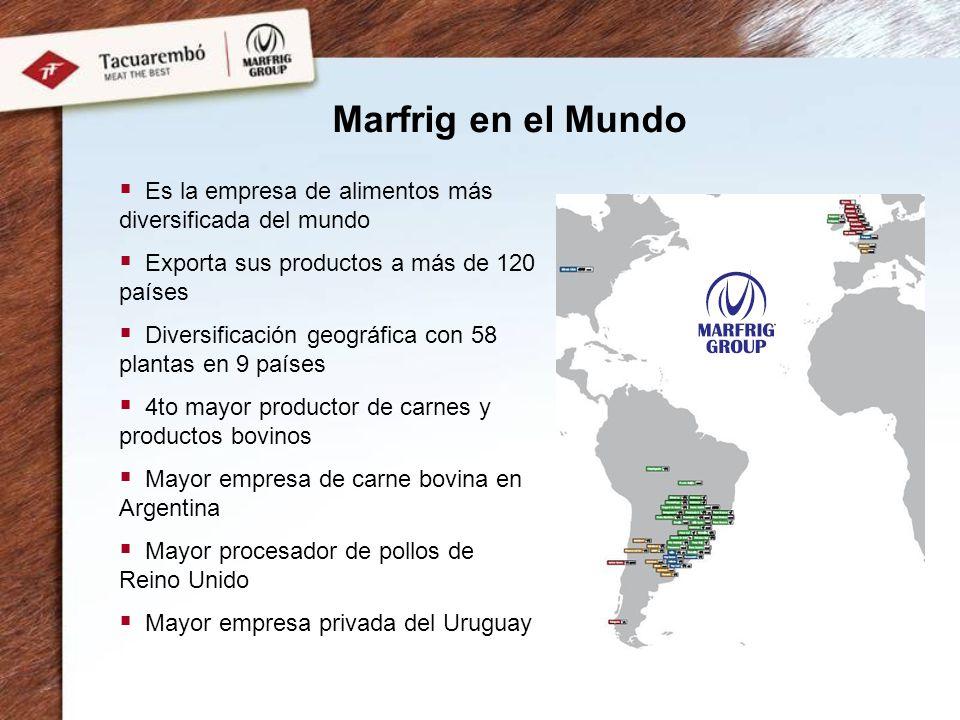 Marfrig en el Mundo Es la empresa de alimentos más diversificada del mundo Exporta sus productos a más de 120 países Diversificación geográfica con 58 plantas en 9 países 4to mayor productor de carnes y productos bovinos Mayor empresa de carne bovina en Argentina Mayor procesador de pollos de Reino Unido Mayor empresa privada del Uruguay