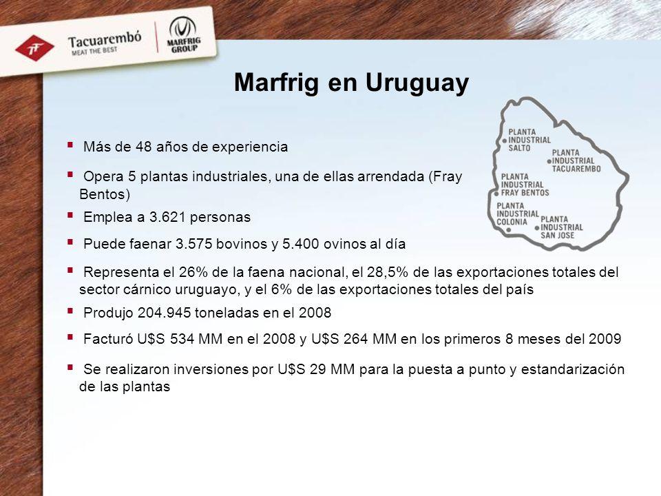 Marfrig en Uruguay Más de 48 años de experiencia Opera 5 plantas industriales, una de ellas arrendada (Fray Bentos) Emplea a 3.621 personas Puede faenar 3.575 bovinos y 5.400 ovinos al día Representa el 26% de la faena nacional, el 28,5% de las exportaciones totales del sector cárnico uruguayo, y el 6% de las exportaciones totales del país Produjo 204.945 toneladas en el 2008 Facturó U$S 534 MM en el 2008 y U$S 264 MM en los primeros 8 meses del 2009 Se realizaron inversiones por U$S 29 MM para la puesta a punto y estandarización de las plantas