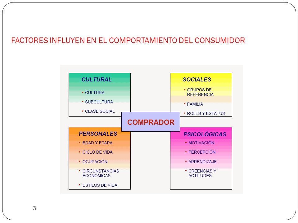 FACTORES INFLUYEN EN EL COMPORTAMIENTO DEL CONSUMIDOR 3