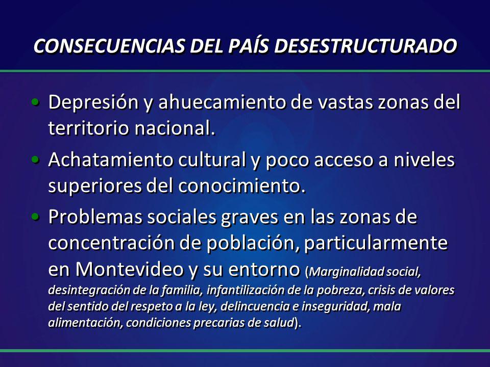 CONSECUENCIAS DEL PAÍS DESESTRUCTURADO Depresión y ahuecamiento de vastas zonas del territorio nacional.