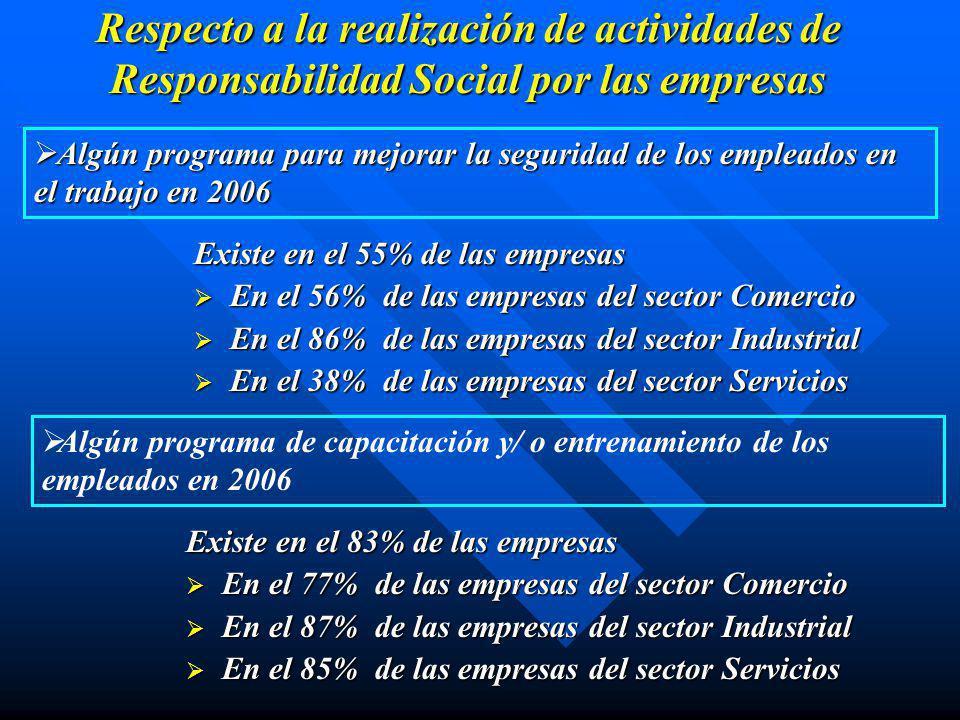Respecto a la realización de actividades de Responsabilidad Social por las empresas Algún programa para promover la participación, el involucramiento y/ o el sentido de pertenencia del personal en 2006.