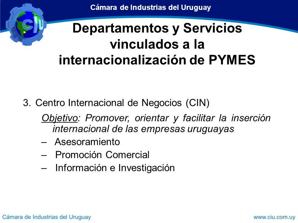 Departamentos y Servicios vinculados a la internacionalización de PYMES 3.Centro Internacional de Negocios (CIN) Objetivo: Promover, orientar y facili