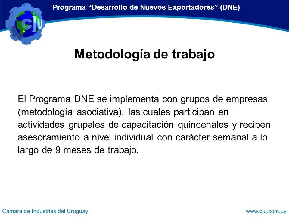 El Programa DNE se implementa con grupos de empresas (metodología asociativa), las cuales participan en actividades grupales de capacitación quincenal