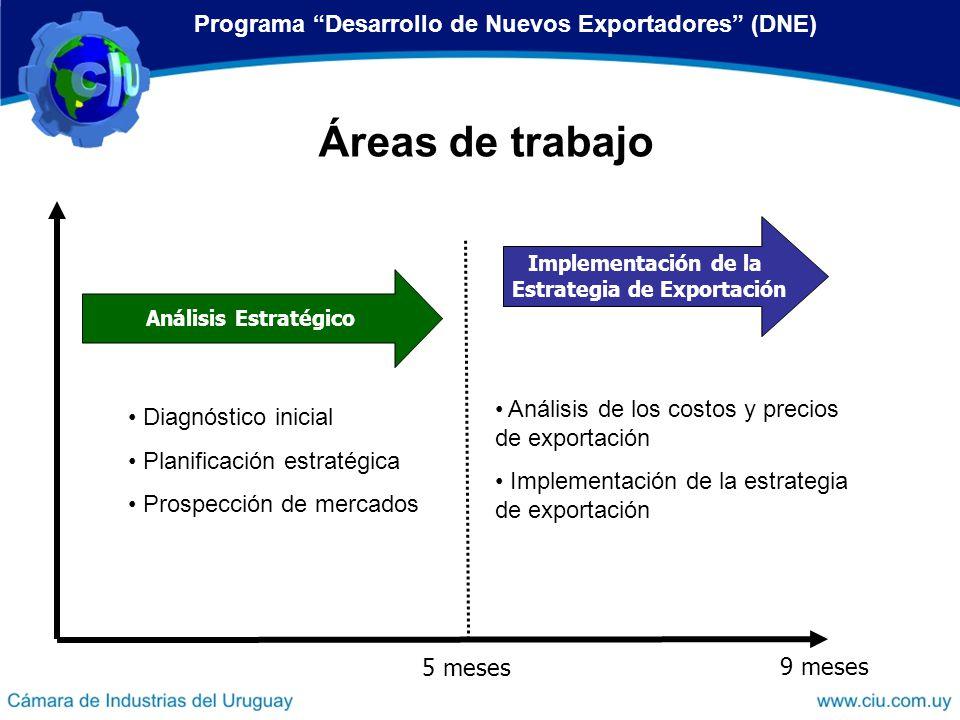 Análisis Estratégico Implementación de la Estrategia de Exportación 5 meses 9 meses Áreas de trabajo Programa Desarrollo de Nuevos Exportadores (DNE)