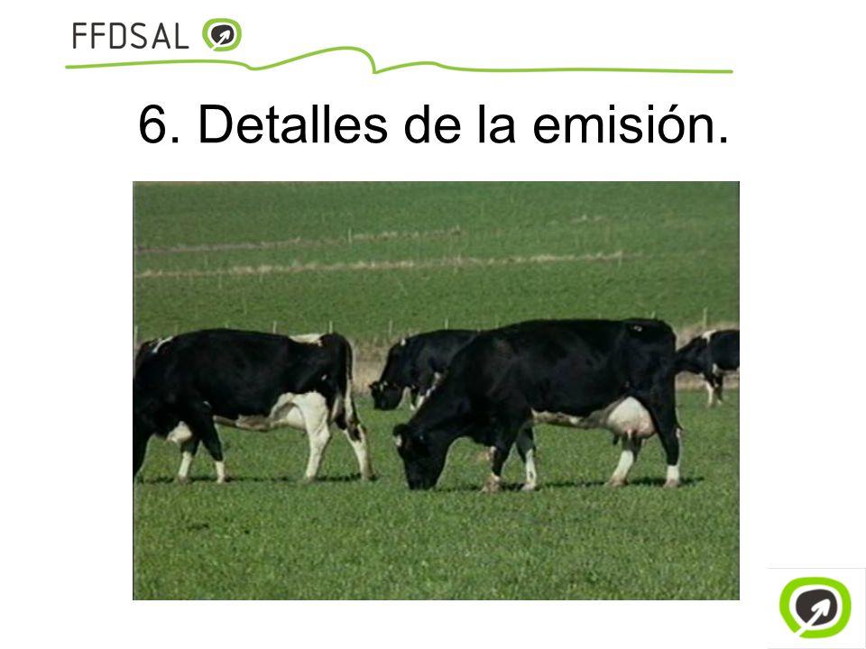 6. Detalles de la emisión.