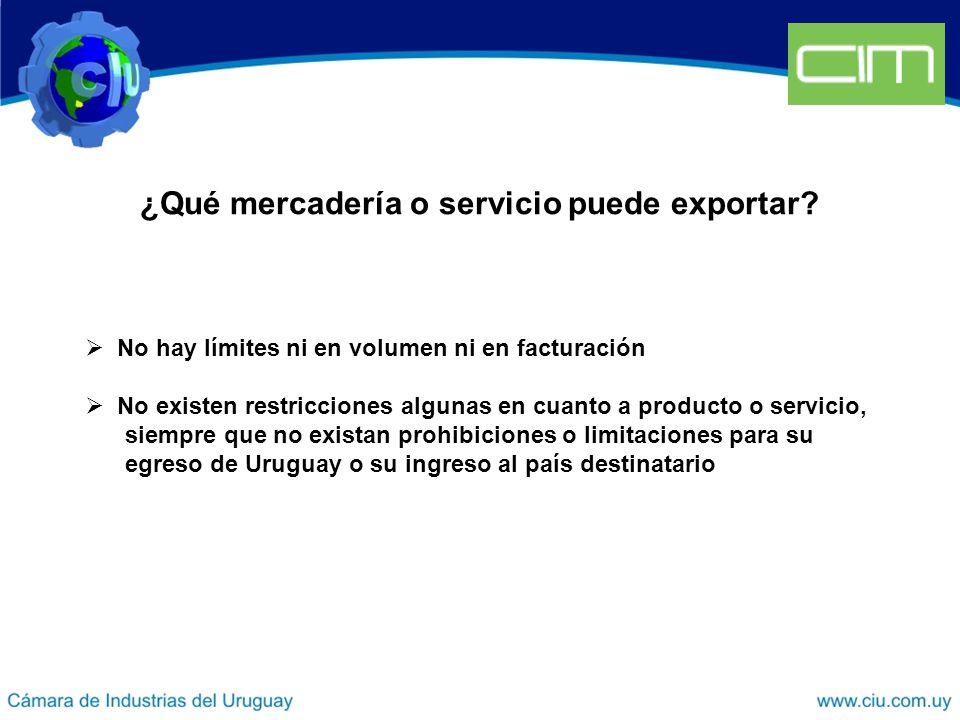 ¿Qué mercadería o servicio puede exportar.