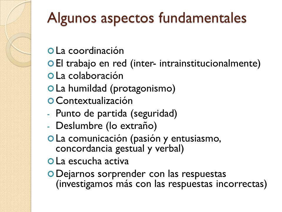 Algunos aspectos fundamentales La coordinación El trabajo en red (inter- intrainstitucionalmente) La colaboración La humildad (protagonismo) Contextua