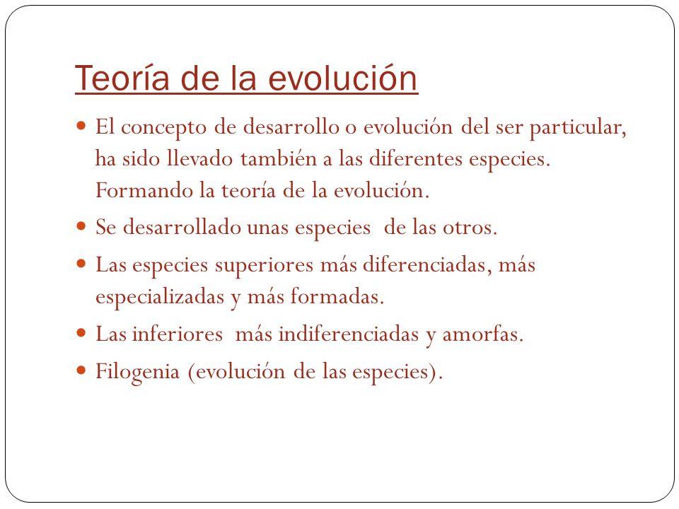 Teoría de la evolución El concepto de desarrollo o evolución del ser particular, ha sido llevado también a las diferentes especies. Formando la teoría